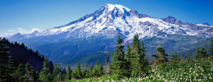 Washingtons Highest Mountain Mt Rainier